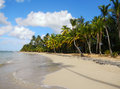 Las terrenas beach samana peninsula dominican republic Royalty Free Stock Images