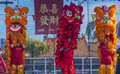 Las vegas chinese new year feb lion dance performance during the celebrations held in nevada on february Stock Images