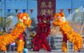Las vegas chinese new year feb lion dance performance during the celebrations held in nevada on february Stock Photos