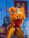 Las vegas chinese new year feb lion dance performer during the celebrations held in nevada on february Royalty Free Stock Photography