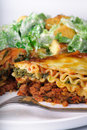 Lasagna Dinner Stock Photography