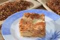 Lasagna traditional italian produitsand recipes Stock Images