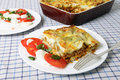 Lasagne verde and caprese salad Royalty Free Stock Photo