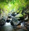 Lasowa fotografia halna rzeka i mechaci kamienie Zdjęcie Royalty Free