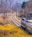 Last car of a train in woodland area Royalty Free Stock Photo