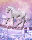 Last unicorn Royalty Free Stock Photo
