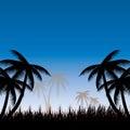 Lata tła whit palma trees Zdjęcie Stock