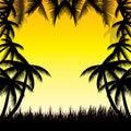 Lata tła whit palma trees Obraz Royalty Free