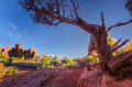 Late afternoon in arches national park utah Stock Photography