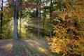 Late Afternoon Autumn Stock Photos
