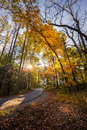 Late Afternoon on Cades Cove Loop Road Royalty Free Stock Photo