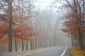 Late autumn fog scenic drive through Royalty Free Stock Photo