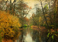 In the late autumn in park. Royalty Free Stock Photo