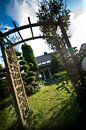 Late summer backyard garden view Royalty Free Stock Photo