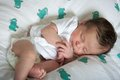Latin newborn baby girl sleeping peacefully wrapped on animal blankets Royalty Free Stock Images