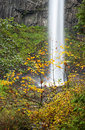 Latourell falls columbia river gorge oregon water plunge of at Royalty Free Stock Image