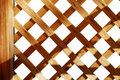 Lattice background Royalty Free Stock Images
