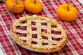 Lattice Cherry Pie Royalty Free Stock Image