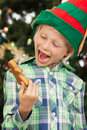 Laughing elf looking at gingerbread man a happy boy dressed as santas helper or an is holding and a cookie isolated on white Royalty Free Stock Photos