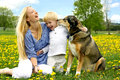 Laughing Mother and Child Playing with Dog Royalty Free Stock Photo
