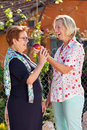 Laughing senior woman giving her friend an apple women a luscious ripe red as they stand together in the sunshine in the garden Stock Photo