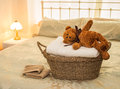 Laundry Basket with Teddy Bear Stock Images