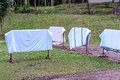 Laundry drying in a garden on a sunny summer day Royalty Free Stock Photo