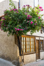 Lautrec france old village tarn midi pyrenees medieval house and plant with flowers Stock Images