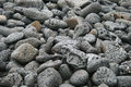 Lava background sulfur volcanic activity at galapagos stones black Stock Photos