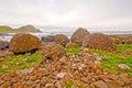 Lava Fomrations on the Irish Coast Royalty Free Stock Photo