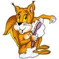 Lavagem do esquilo Imagens de Stock