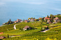 Lavaux region Royalty Free Stock Image