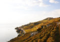 Lavaux region switzerland vineyards in Stock Photography