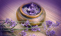 Lavender in a clay pot on the table Royalty Free Stock Photos