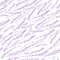 Lavender colorful seamless vector pattern hand drawn graphic flower texture background, sketch isolated on background