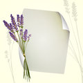 Lavender design illustration of a sheet of paper with Royalty Free Stock Photography