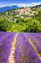 Lavender field and village, France. Royalty Free Stock Photo