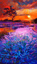Lavender fields original oil painting of on canvas sunset landscape modern impressionism Stock Image
