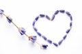 Lavender flower heart shape