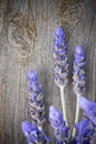 Lavender flowers background close up with a wood Royalty Free Stock Photography