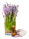 Lavender flowers and essential oil isolated on white Stock Image