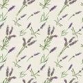 Lavender flowers. Vintage repeating background. Watercolor