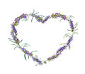 Lavender flowers. Watercolor floral heart frame Royalty Free Stock Photo