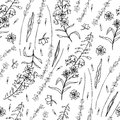 Lavender flowers, Willow herb, Chamerion angustifolium, fireweed, rosebay hand drawn graphic illustration, seamless