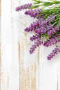 Lavender flowers on a wooden background Stock Photography