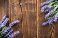 Lavender flowers on a wooden background Royalty Free Stock Image