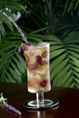 Lavender Grape Iced Tea Stock Photography