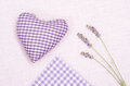 Lavender with heart and cloth of cloth violet checks Royalty Free Stock Photos