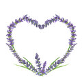 Lavender heart, wedding or valentine graphic motive, watercolor painting, illustration Royalty Free Stock Photo