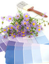 Lavender interior decoration plan Stock Images